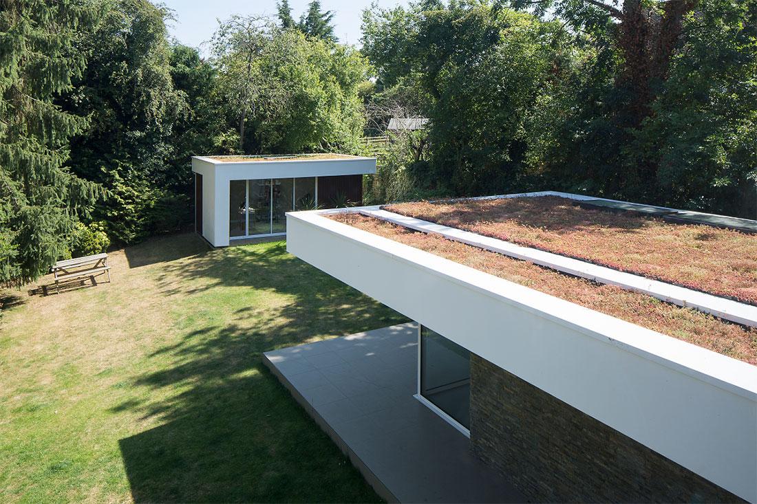 Green living roof